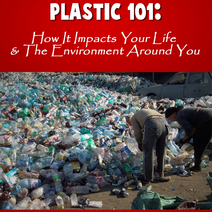 Plastic & the Environment