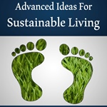 Advanced Ideas for Sustainable Living
